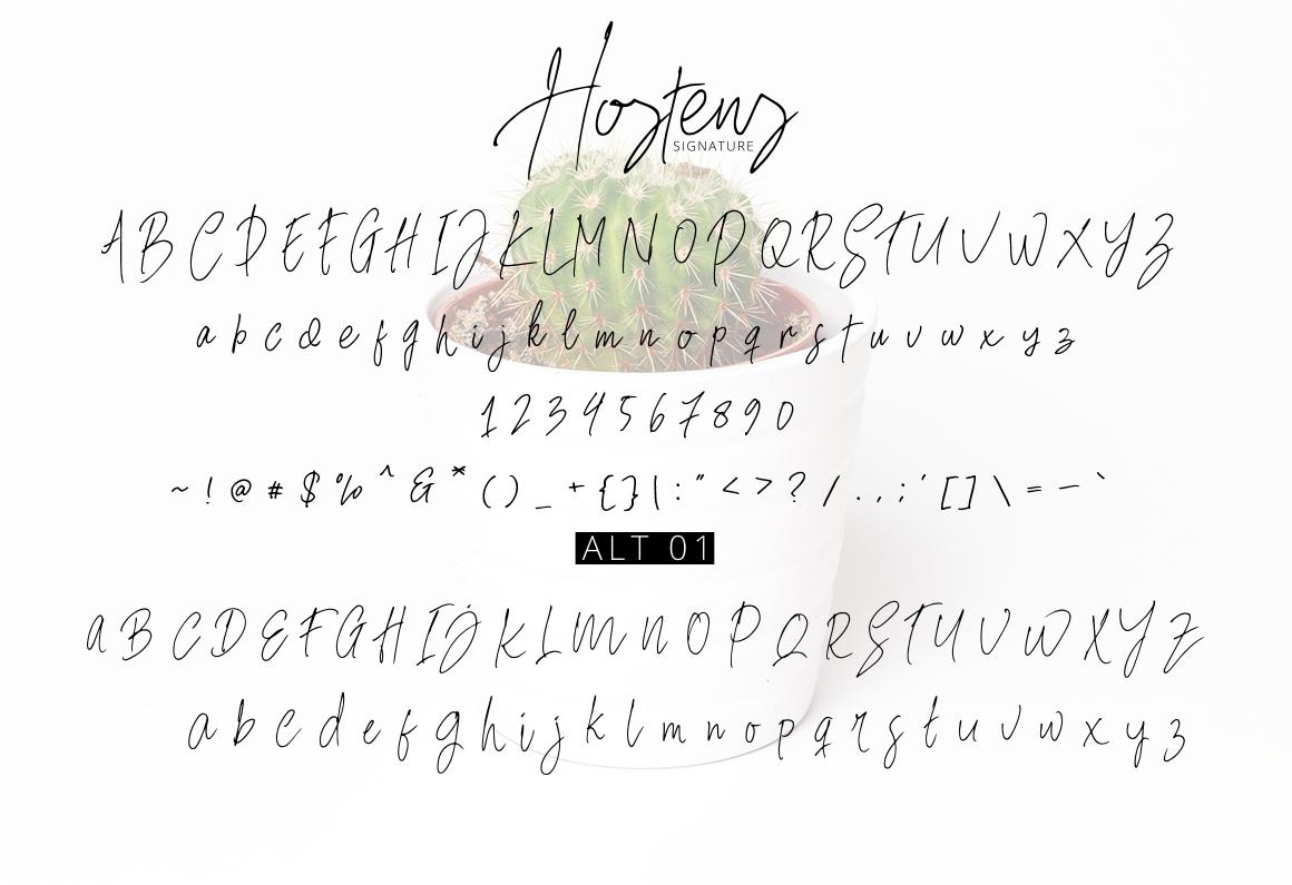 Hostens Signature example image 14