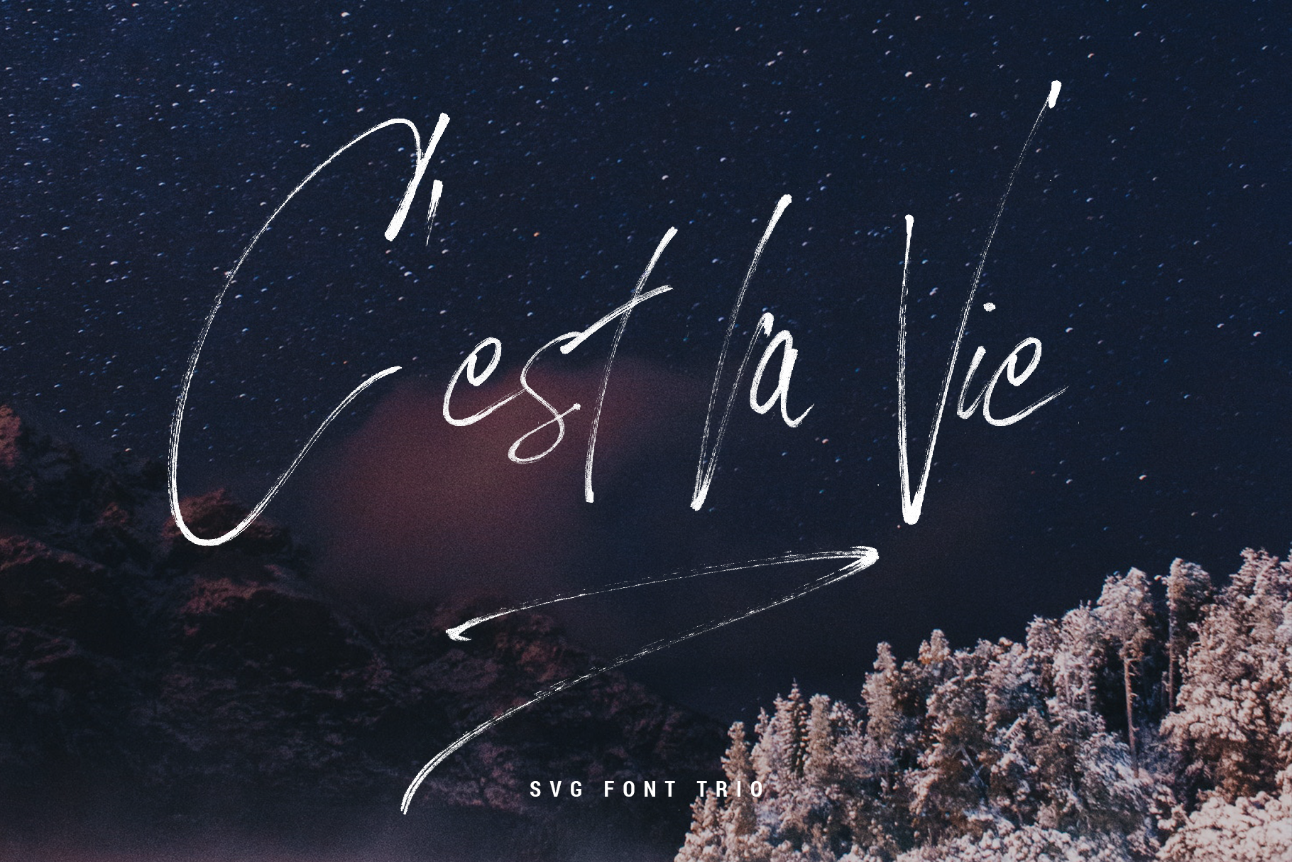 Loving Celine Signature SVG Font Trio - Modern Brush Fonts example image 3
