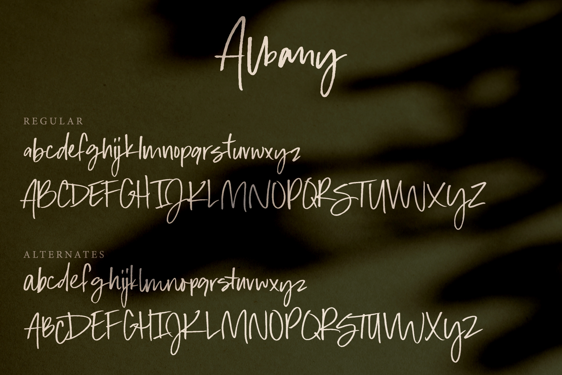 Albany | An Autumn Script example image 2