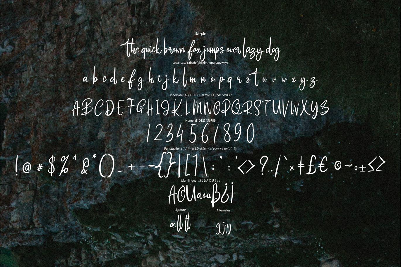 Higlays | Modern Script Font example image 6