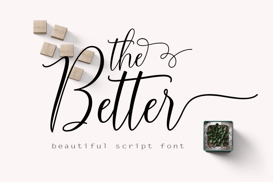 Font Bundle Collection example image 11