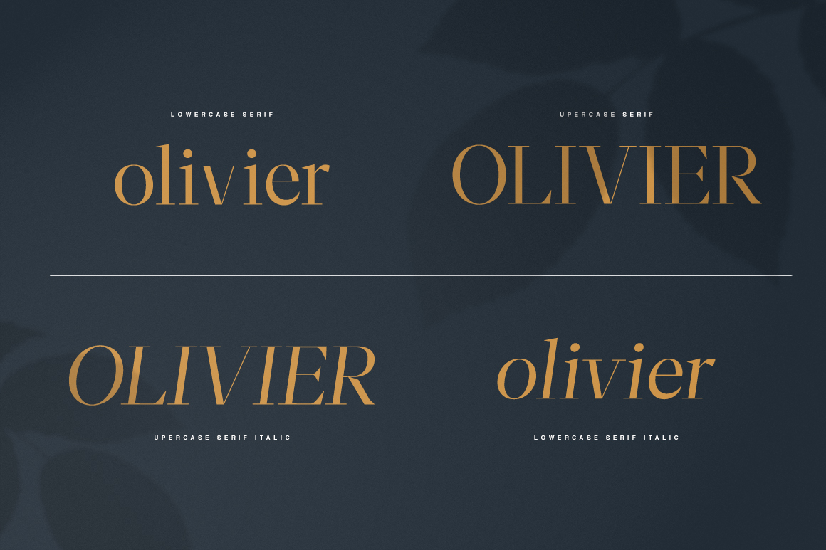 Moriarty Serif Font example image 4