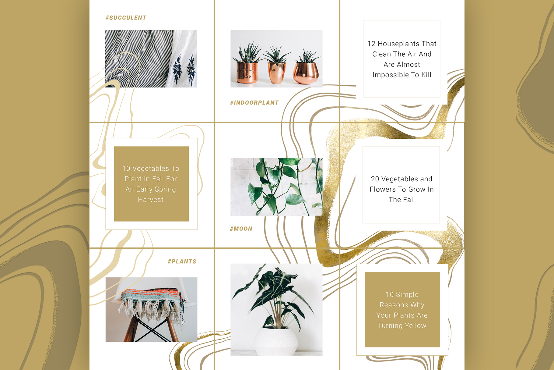 Female Business Instagram Templates example image 4