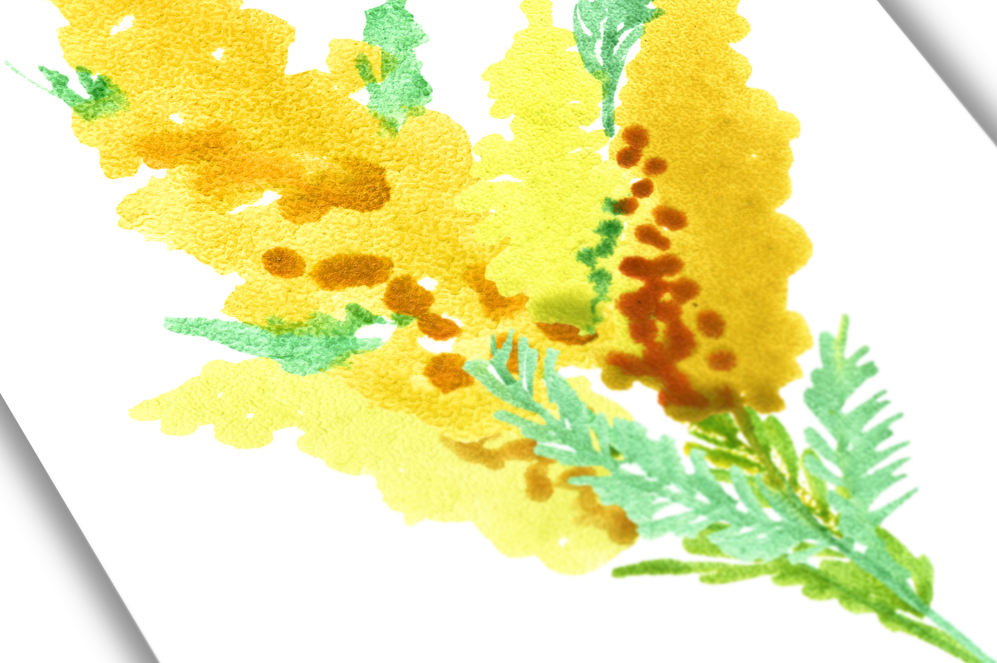 Watercolor yellow spring flowers example image 6