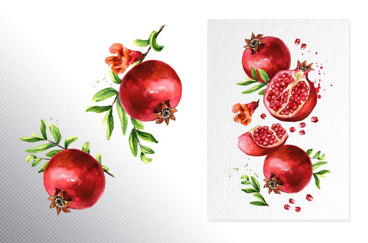 Pomegranate. Watercolor collection example image 6