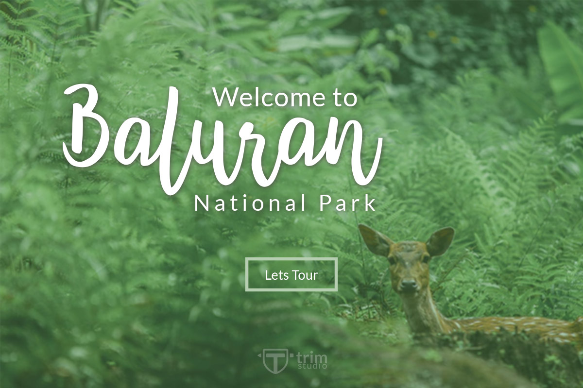 Andaman - Handlettering Font example image 4