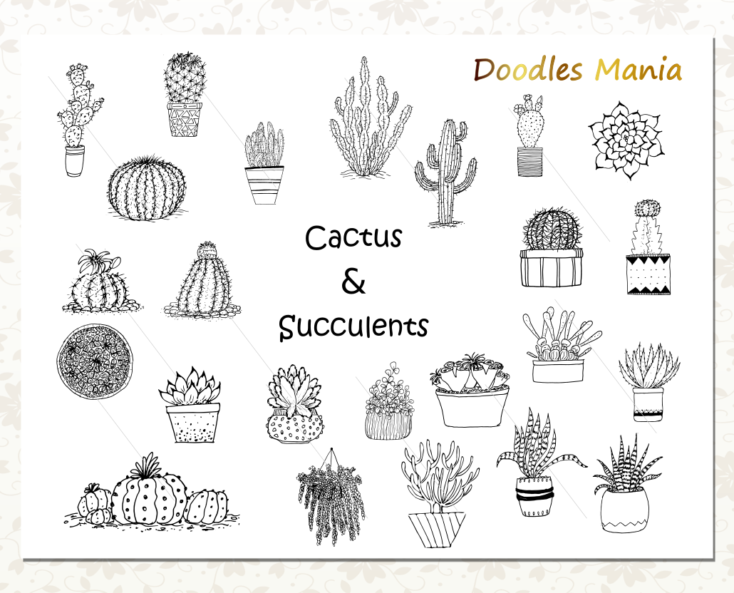 Cactus Vector Clipart Collection example image 3