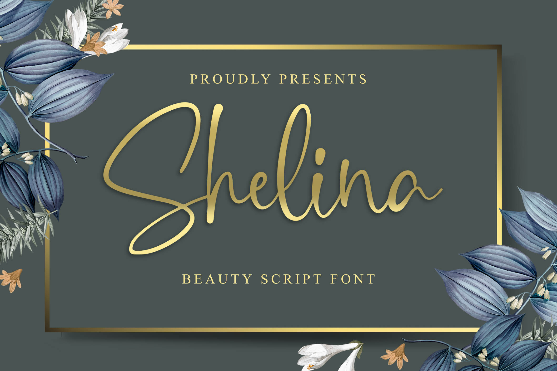 Shelina Beauty Script Font example image 1