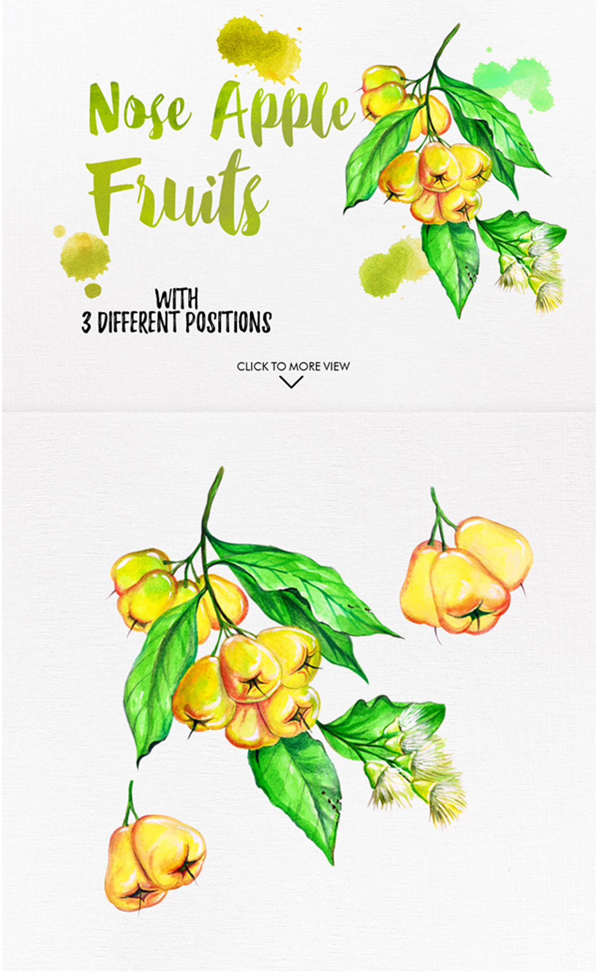 watercolor fruits vol. 6 example image 7