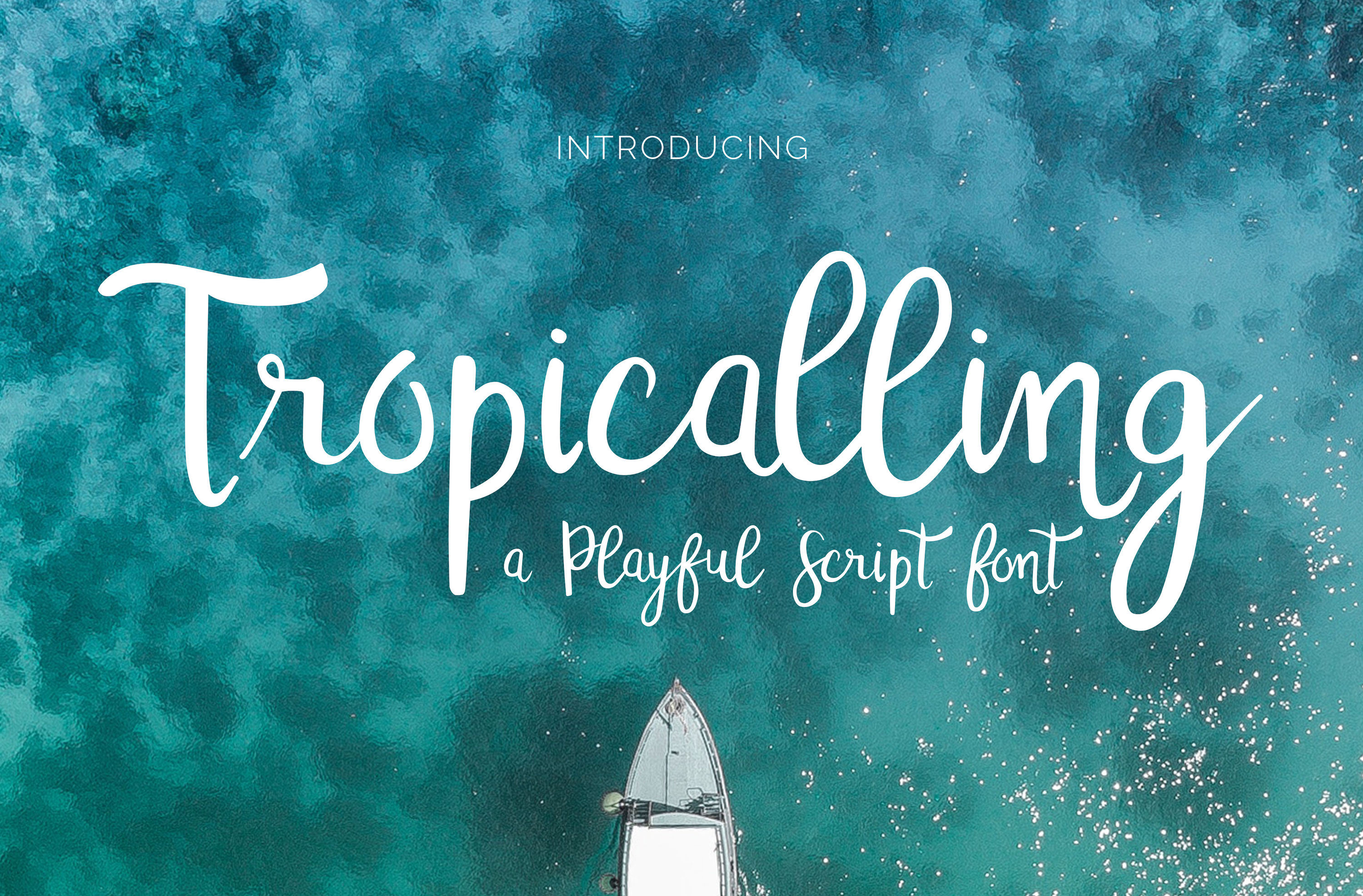 Christine Teixeira Shop Font Bundle example image 11