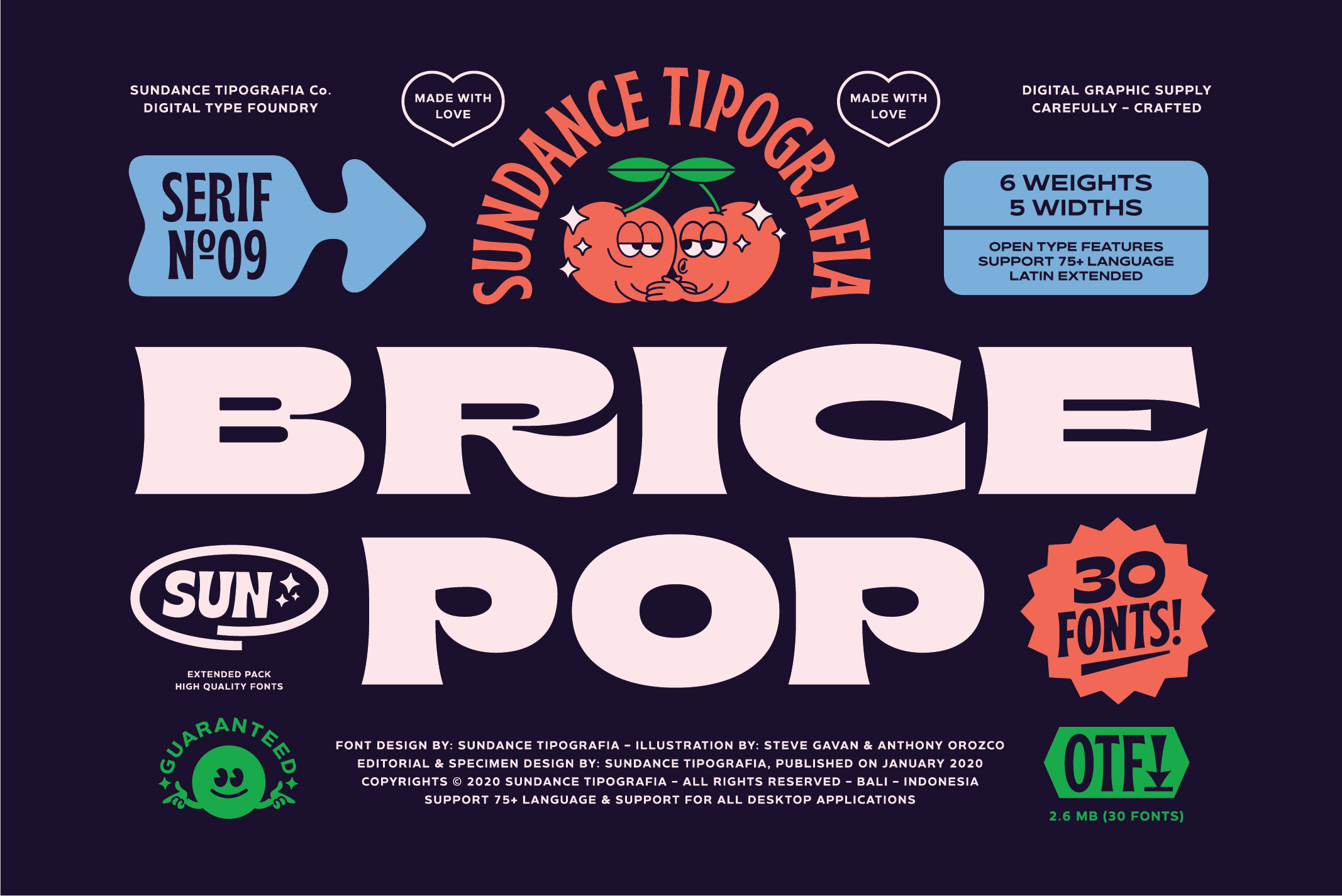 Brice Font Family example image 1