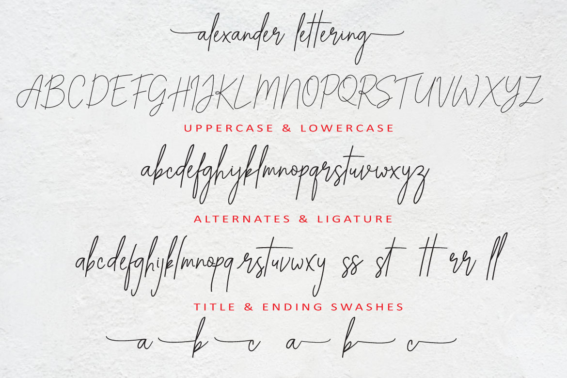 ALEXANDER LETTERING | Stay Classic example image 10