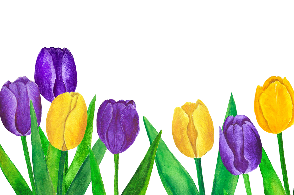 Flowers Tulips Watercolor example image 3