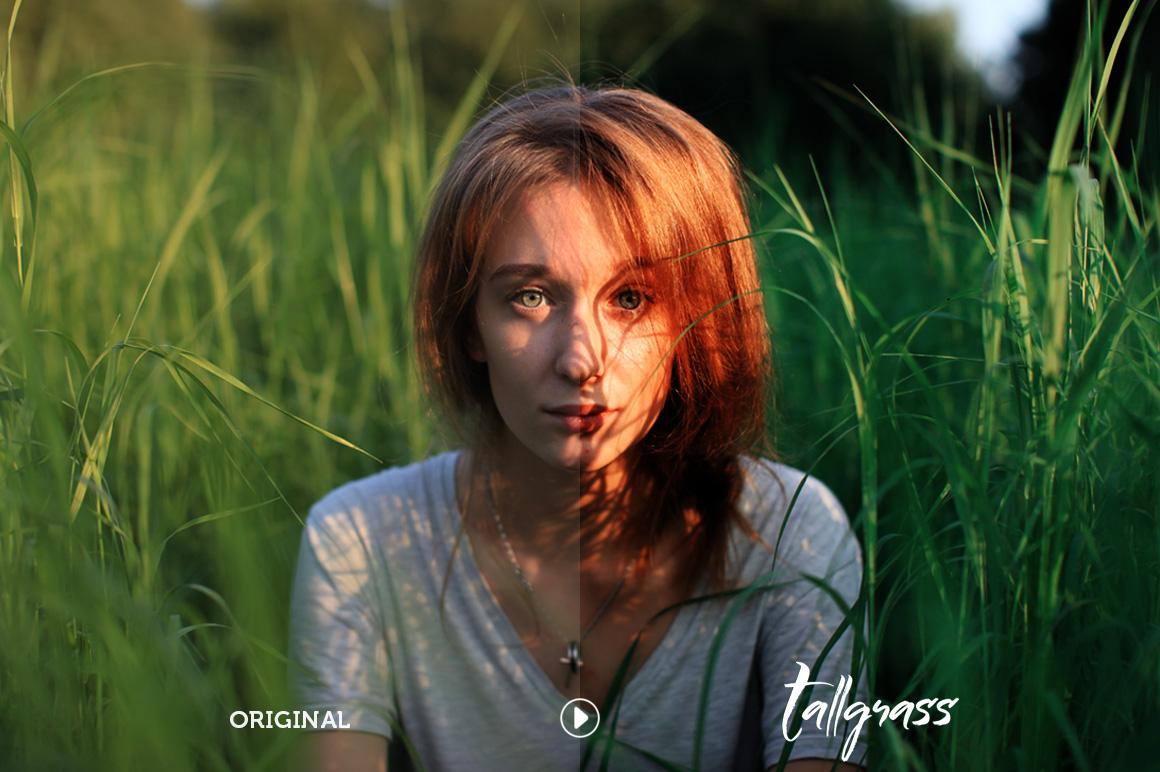 Tallgrass Photoshop Action example image 4