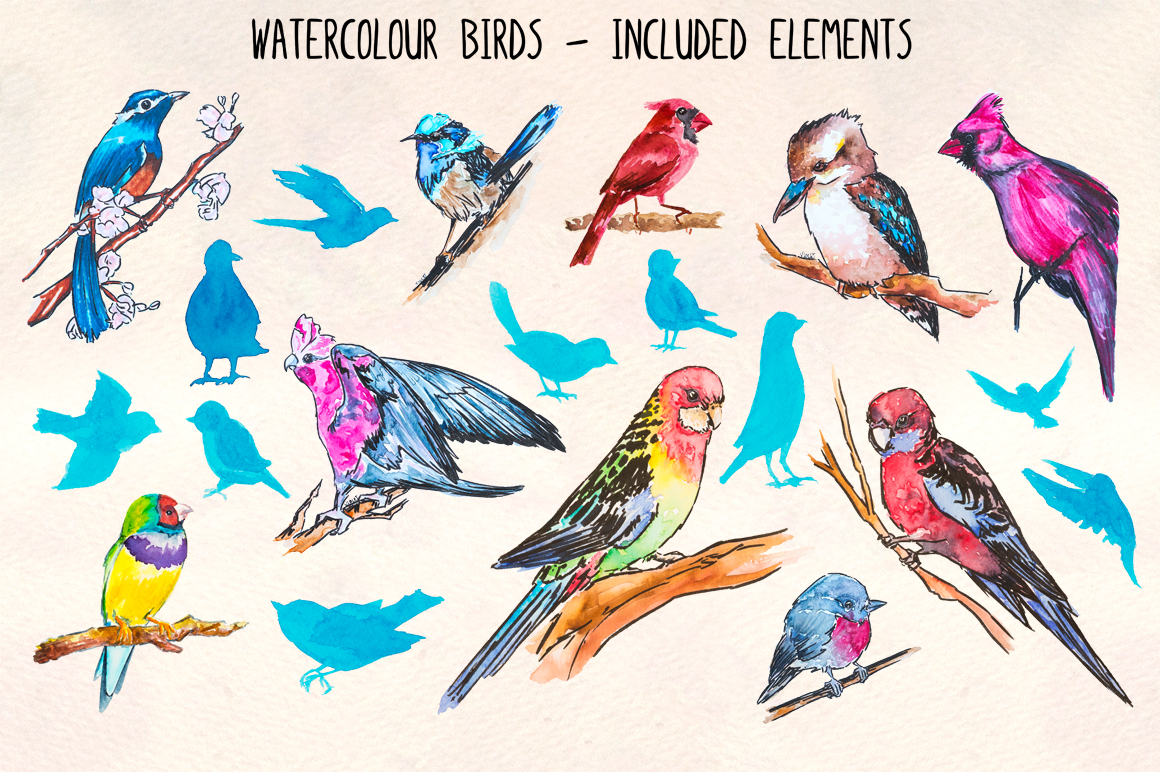 20 Colorful Fancy Bird Watercolor Graphics example image 2