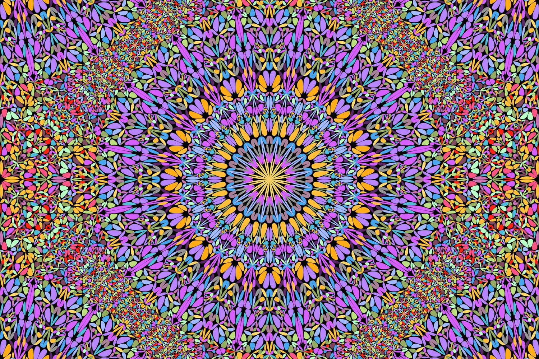48 Seamless Floral Mandala Patterns example image 3