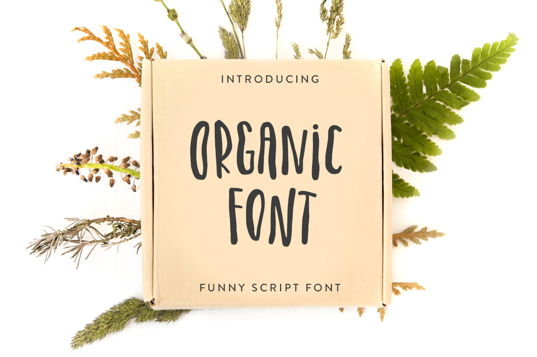 Organic Font example image 1