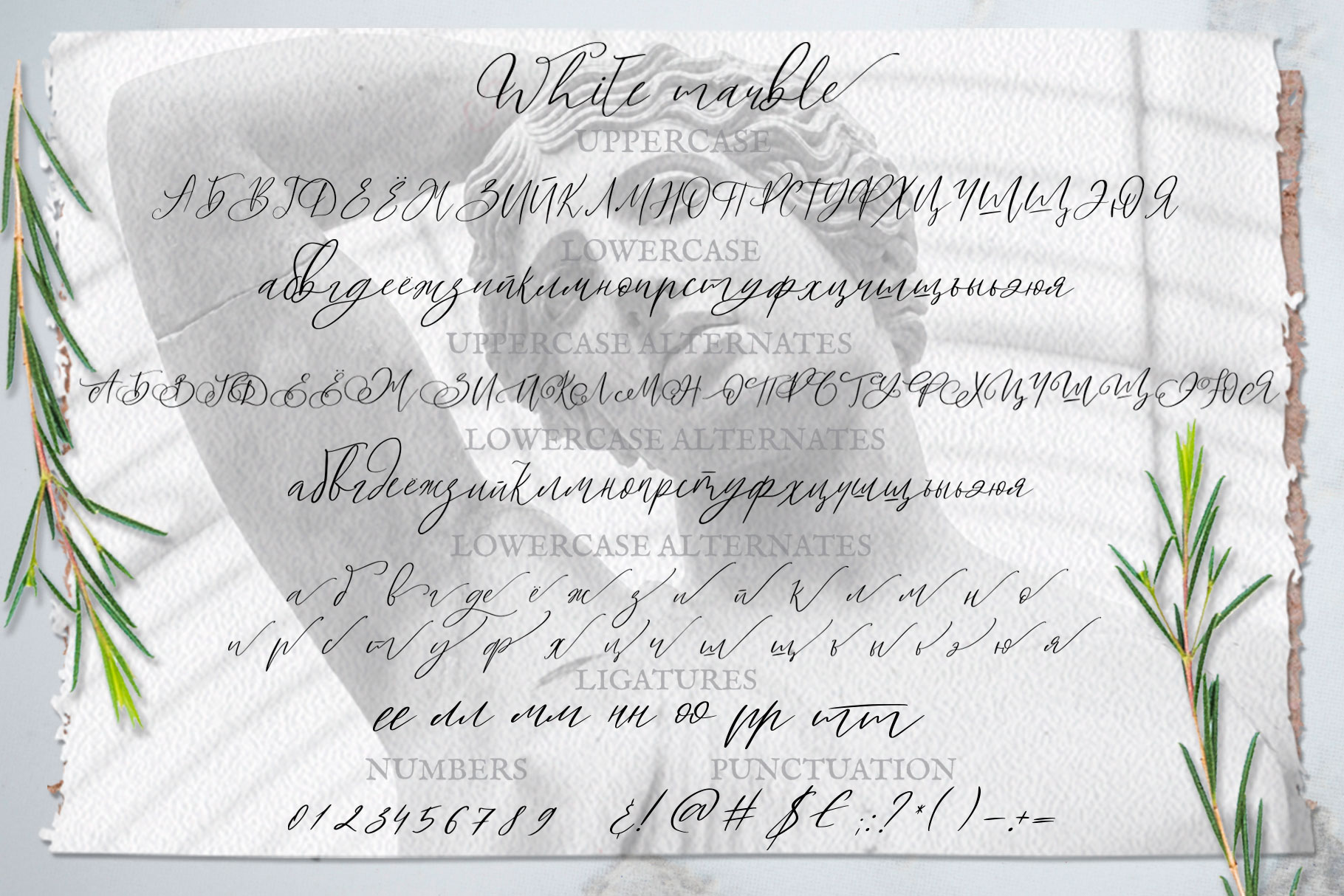 White Marble Calligraphy Font example image 10