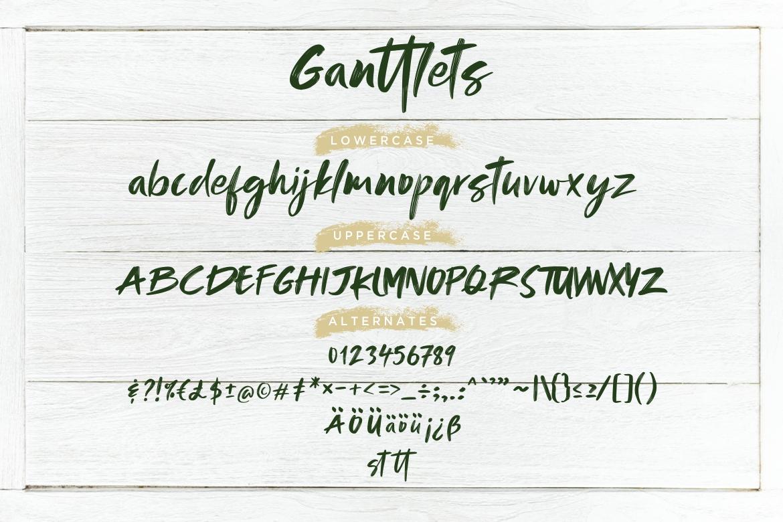 Ganttlets Brush Script example image 7