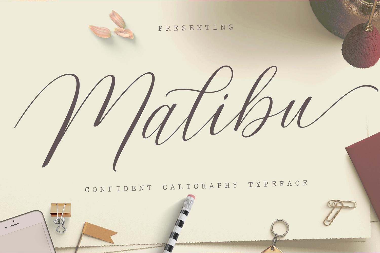 Malibu Script example image 1