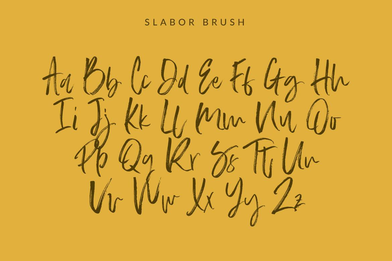 Slabor Brush example image 7