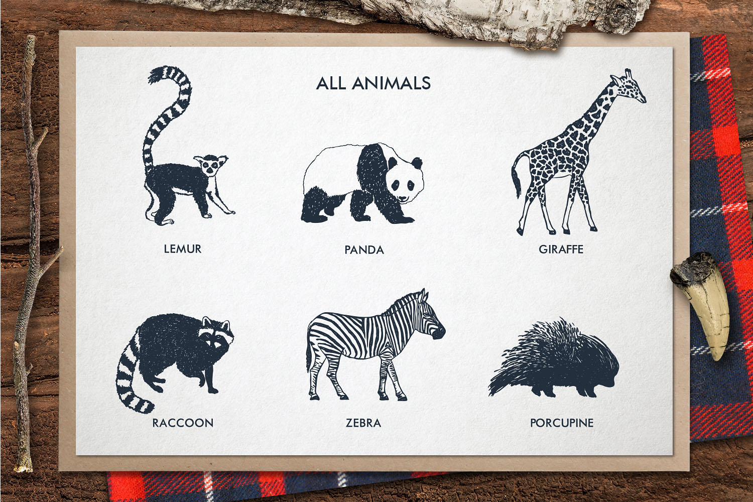 ZOONIMALS. Hand Drawn Animals example image 4