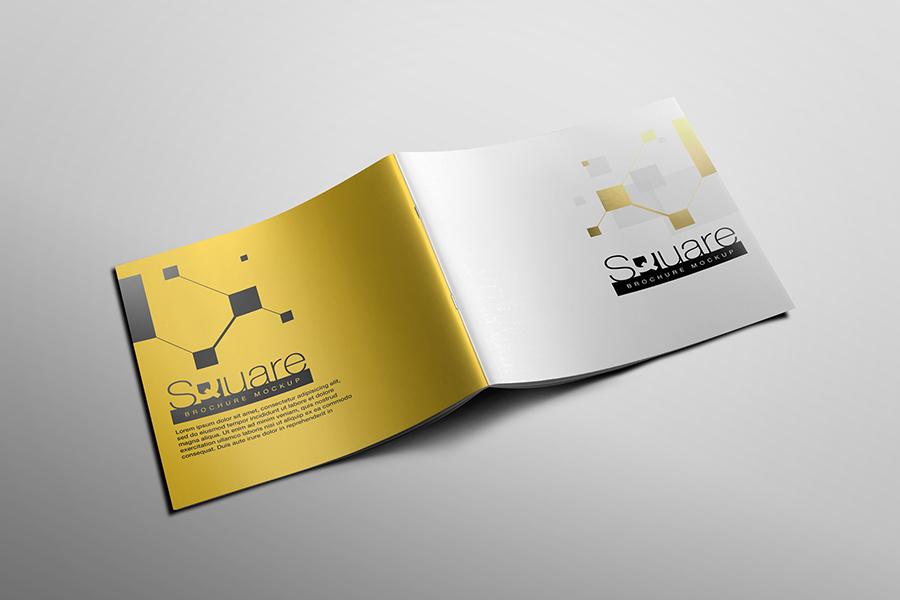 Square Brochure Mockup example image 9