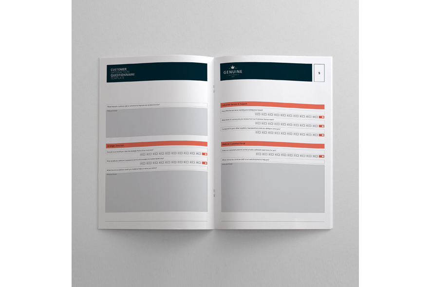 Customer Satisfaction Questionnaire Template example image 2