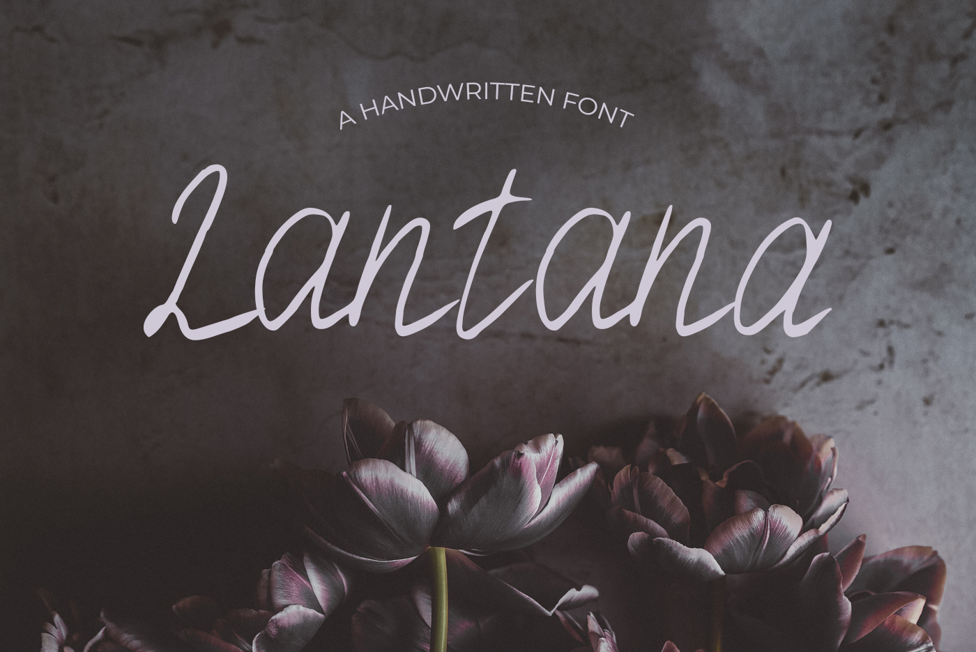 40 Handmade Fonts example image 23
