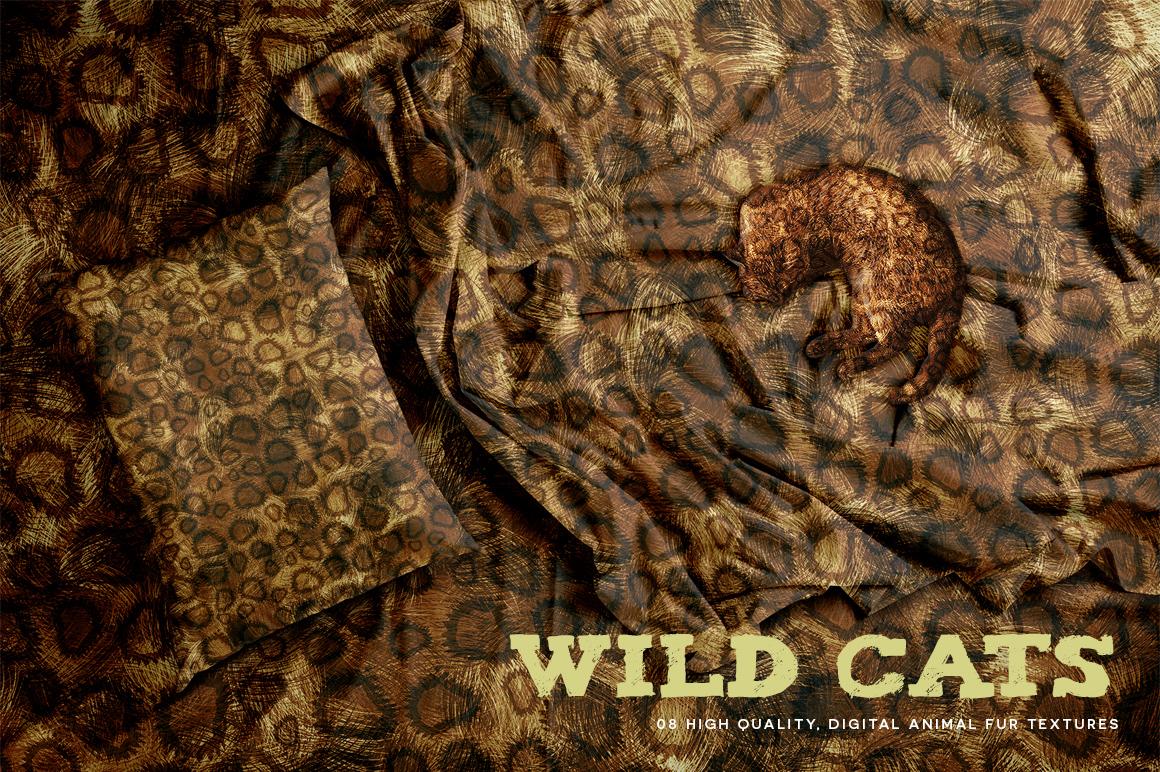 Wild Cats example image 7