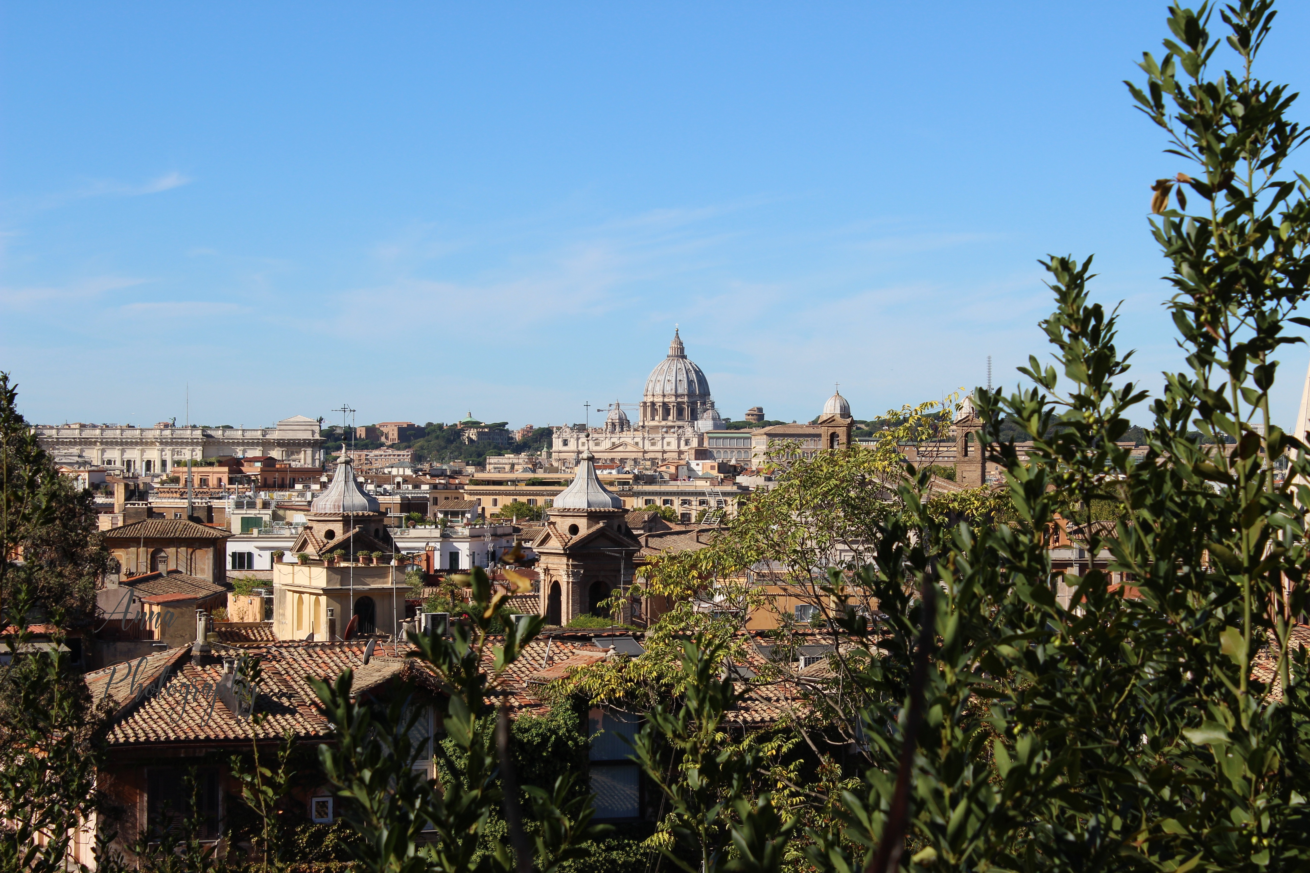 Vatican Skyline example image 1