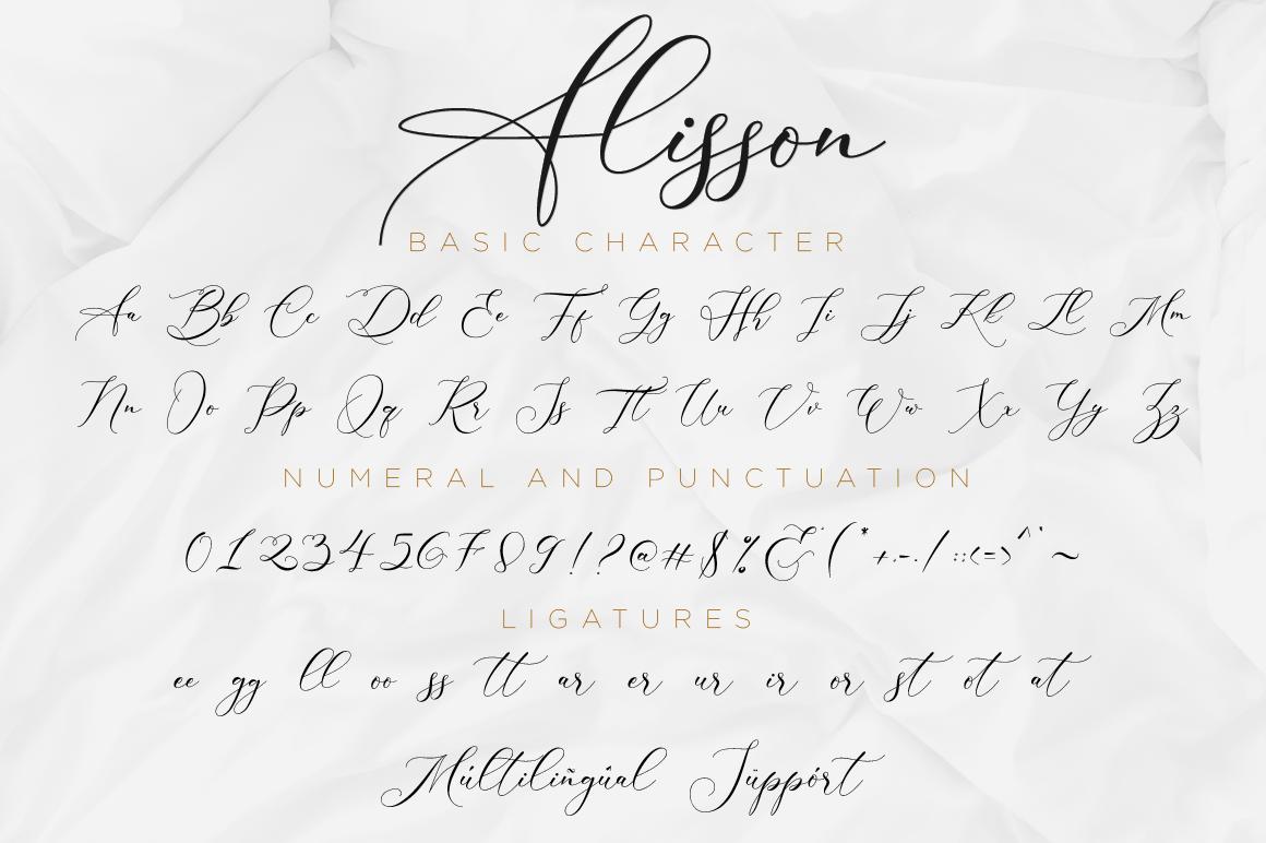 Alisson Script example image 12