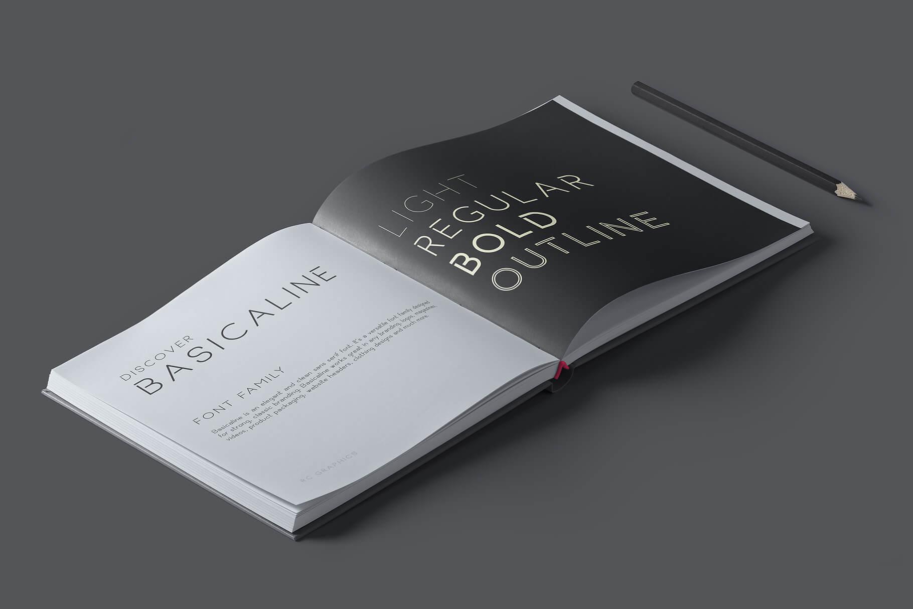 Basicaline Font Family - Sans Serif example image 2