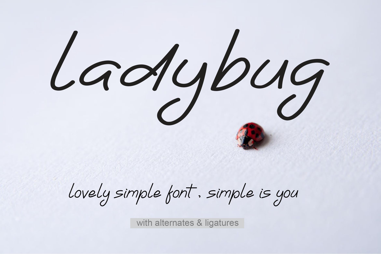 Ladybug | Simple Font example image 1