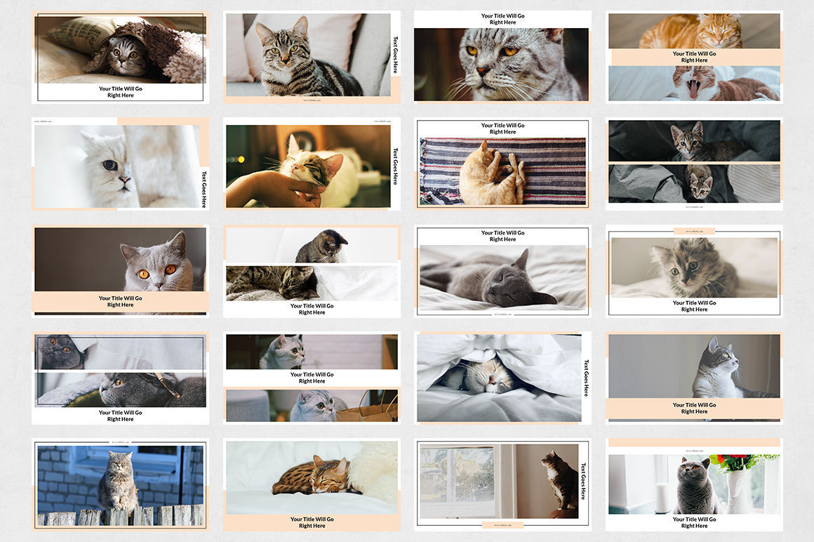 Cats Facebook Posts example image 7