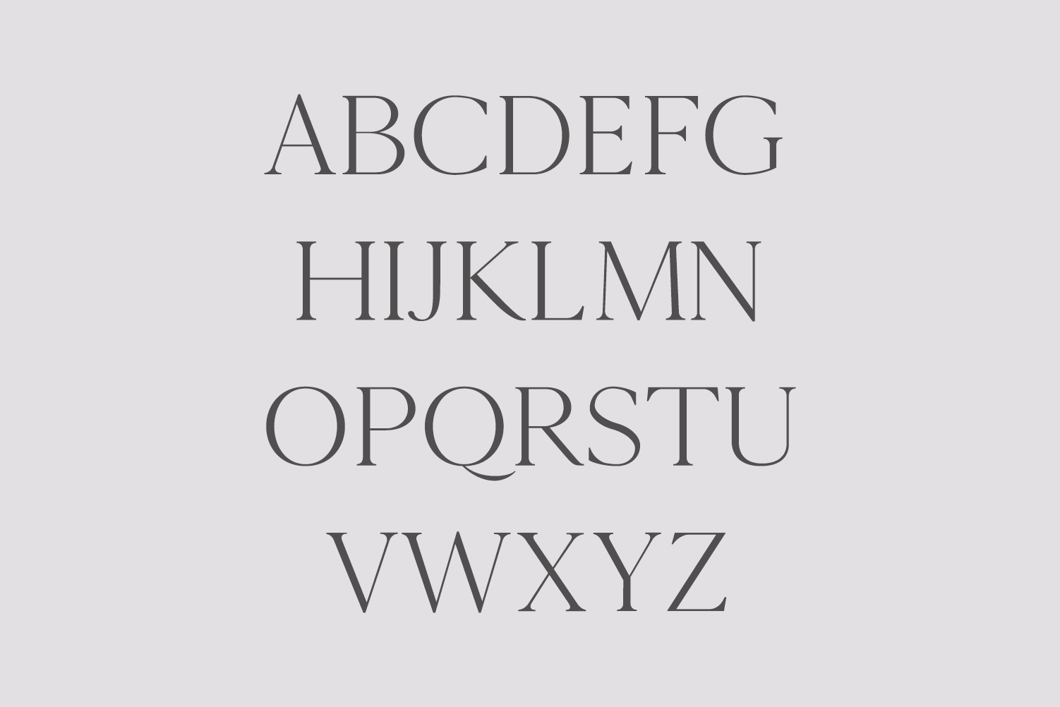 Cammron Serif Font Family example image 2