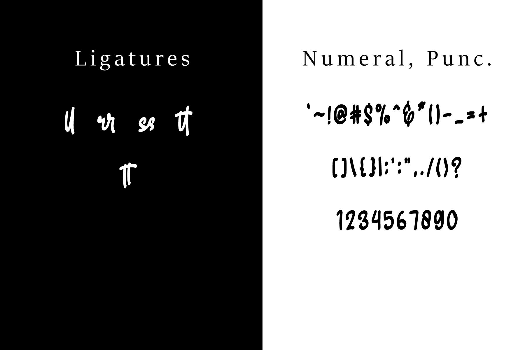 Skilled | Elegant Fonts example image 14