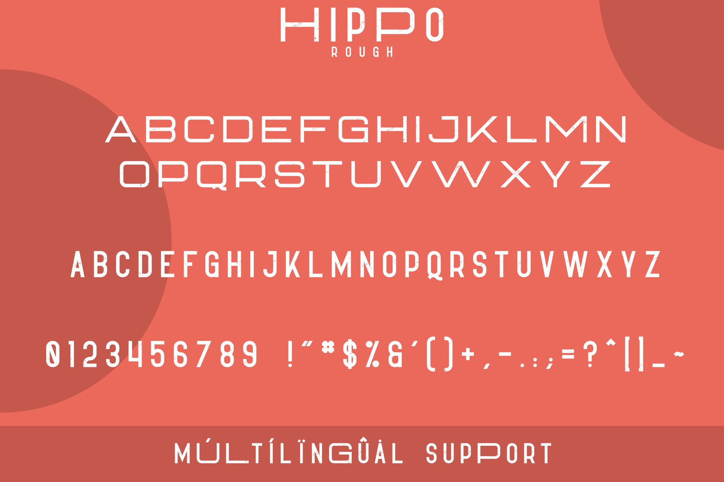 Hippo Sans Serif | 3 styles example image 9
