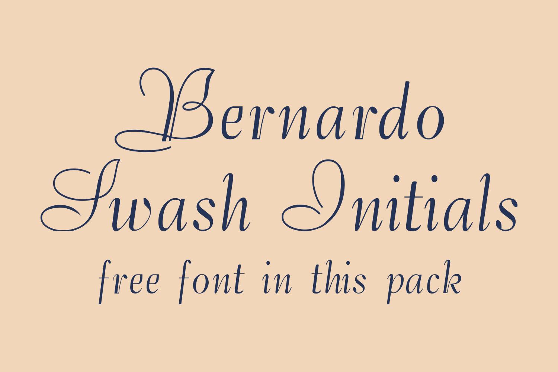 Bernardo (FAMILY PACK PROMOTIONAL) example image 2