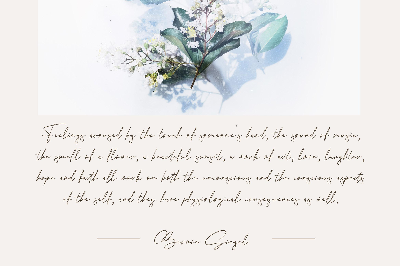 Andrea Belarosa - Beauty Font example image 5