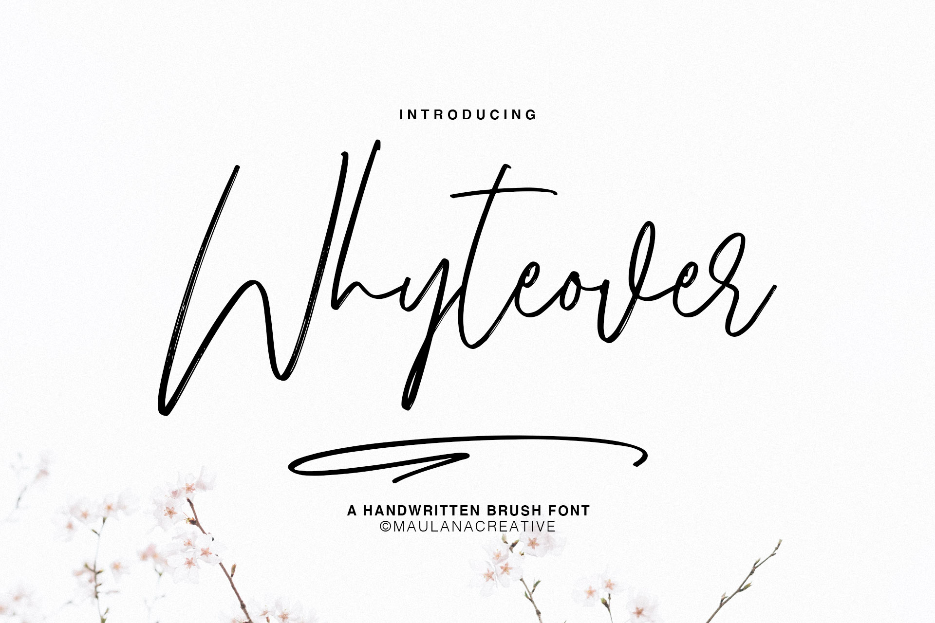 Whyteover Typeface example image 1