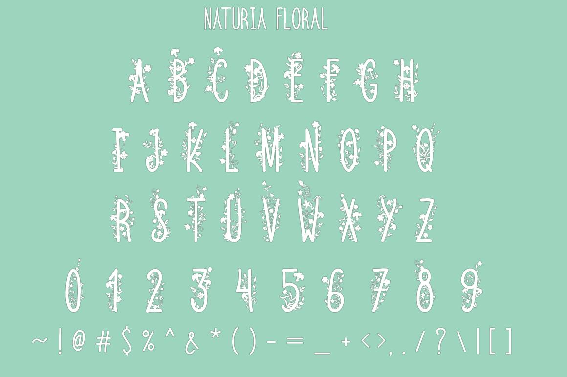 The Crafter's Font Bundle - 12 Font Families & Bonus Extras example image 8