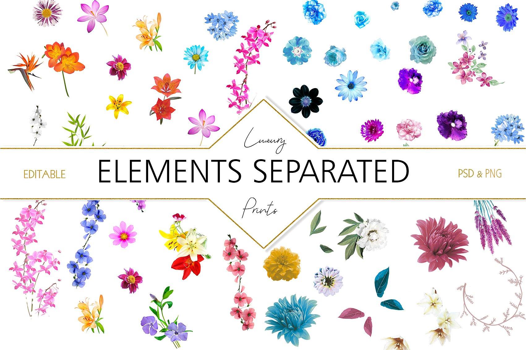 Garden of Eden Flowers Patterns clipArt example image 11