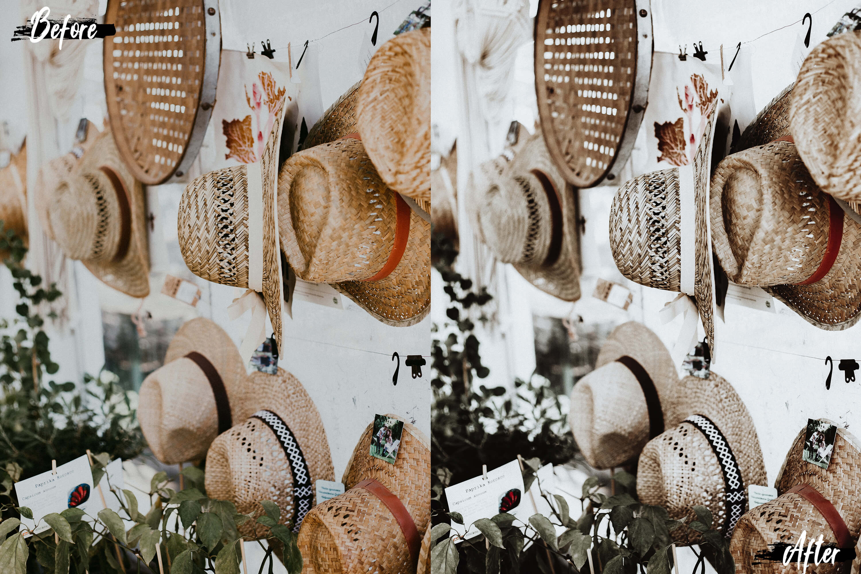 5 Coconut Desktop Lightroom Presets and ACR preset example image 10