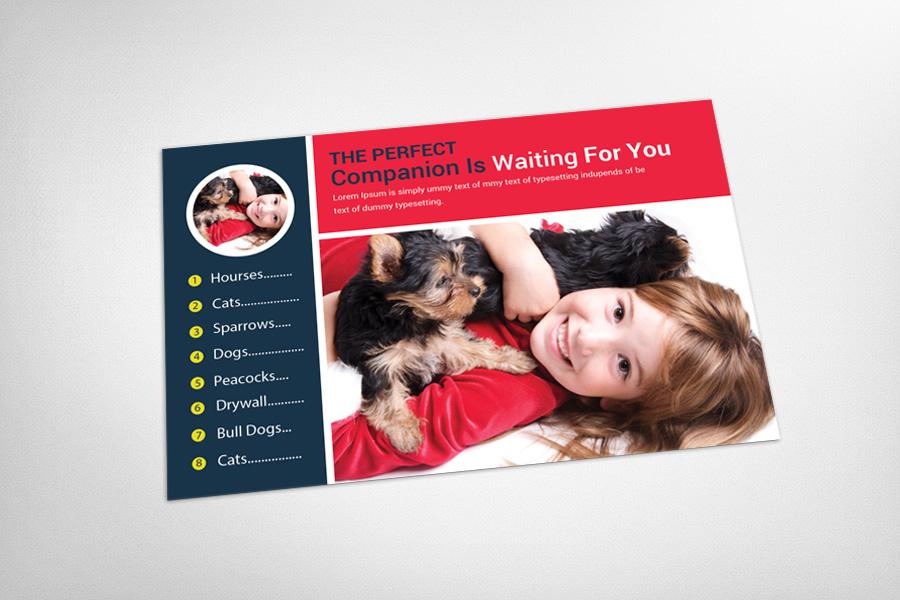 Pet Clinic & Shop Postcard Template example image 3