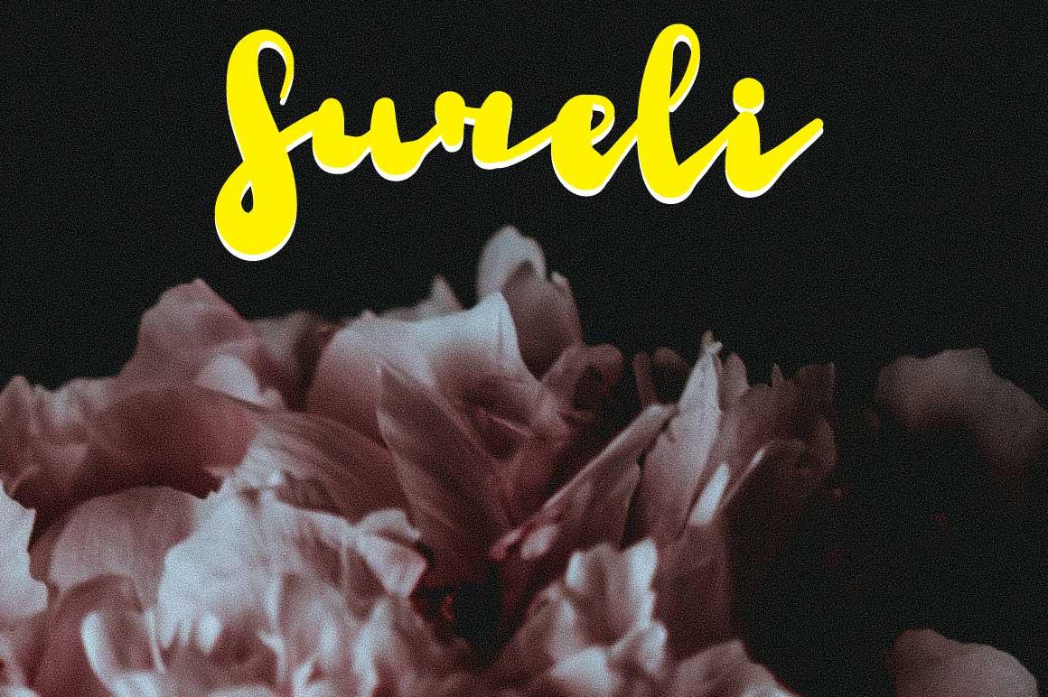 Sureli Script Font example image 1