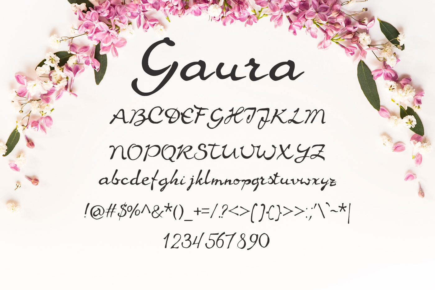 Gaura Font example image 2