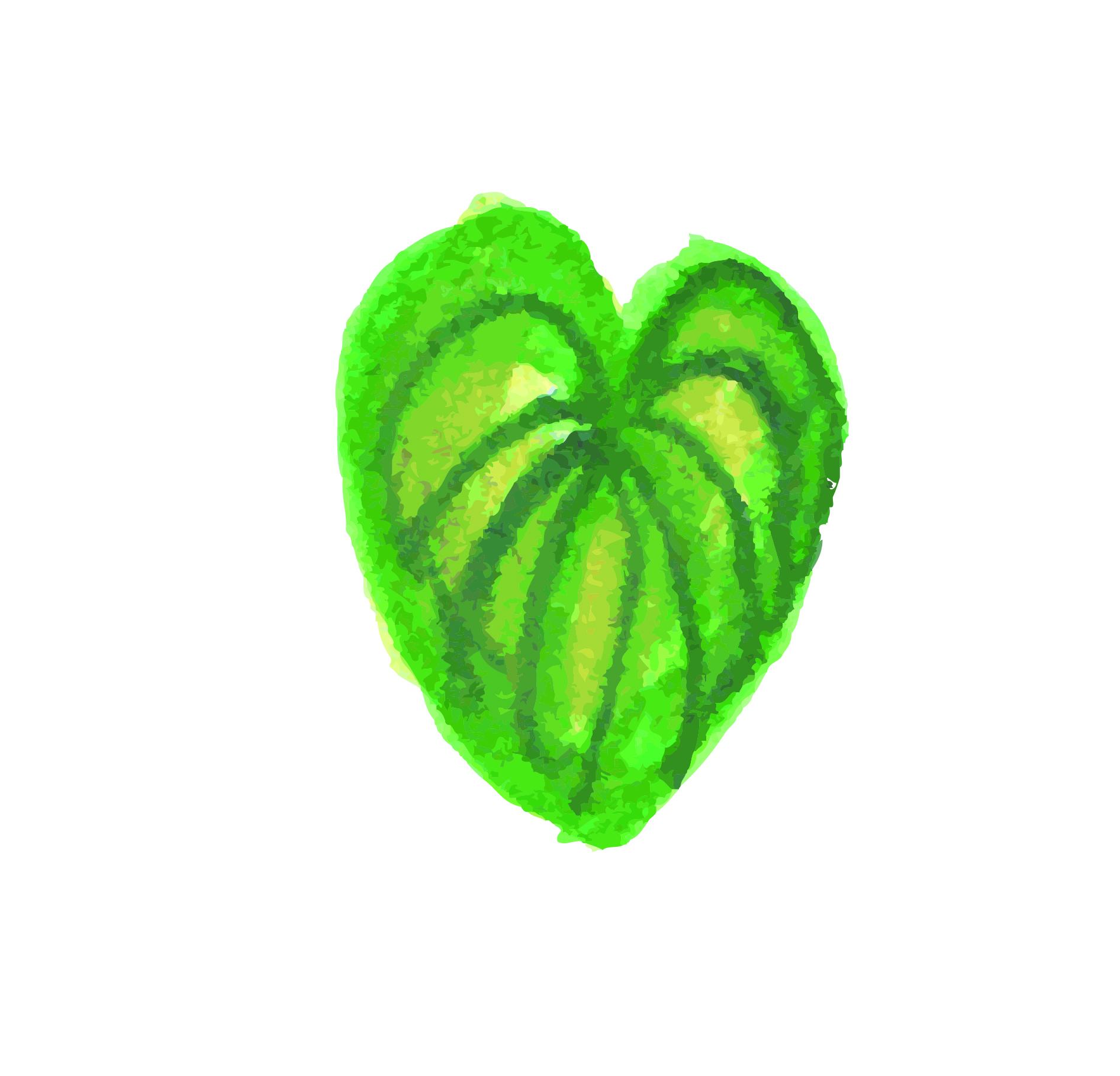 Tropicla Breeze clip art bundle example image 16