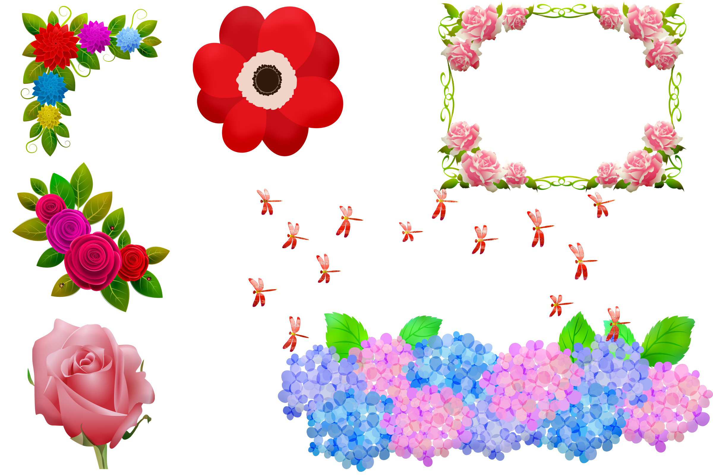Summer Florals & Elements Clip Art example image 4
