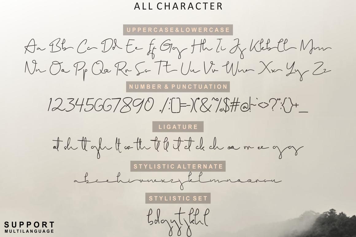 Brigham Signature Script example image 6